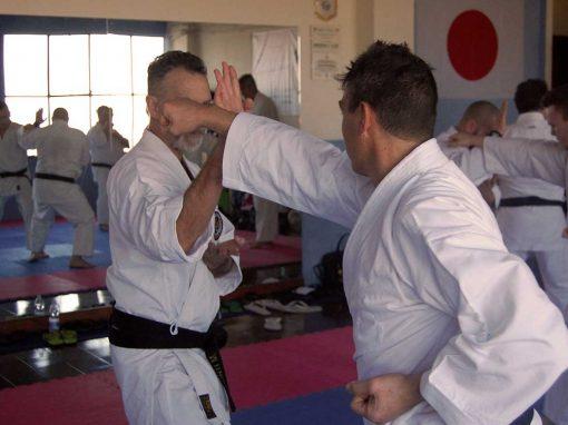 Karate Wado Ryu